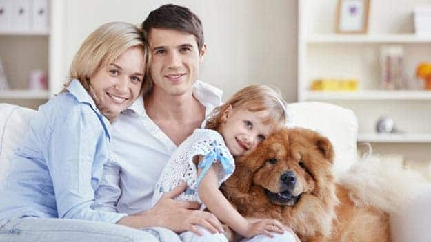 Wills & Trusts dog-young-family Direct Wills Canons Ashby